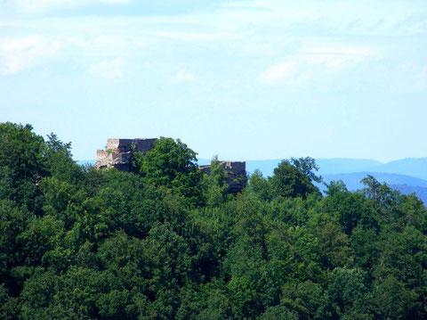 Wegelnburg vu du Hohenbourg
