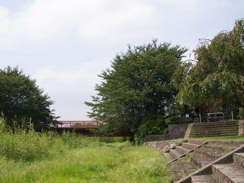 野川の天神橋