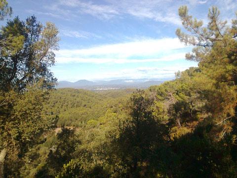 Bergland von Cataluna - südliche Pyrenäen