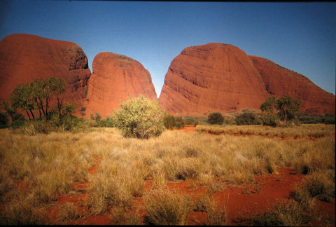 Abords d'Ayers- Rock