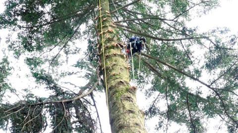 ウッドタワー工法【ロープクライミング】