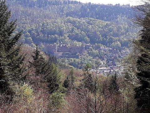 Heiligenbergwanderung