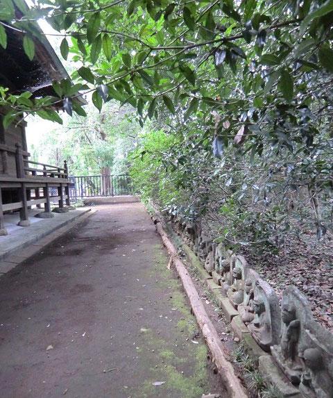 10月5日(2013)石仏群:武蔵国分寺・薬師堂裏