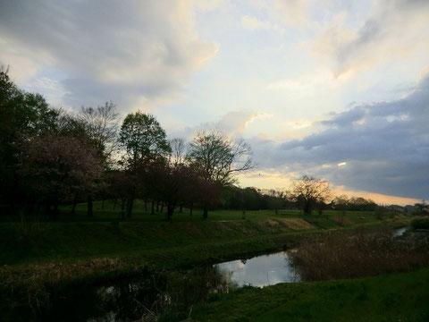 ▲野川の夕暮れ
