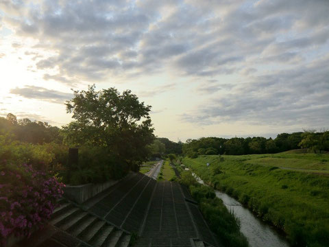 ▲野川の夜明け