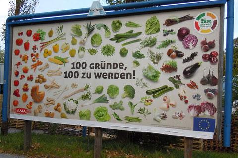 100 Gründe 100 zu werden!