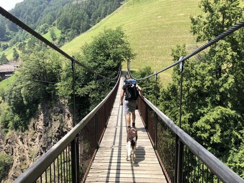 Mit Hund auf dem Meraner Höhenweg; etappen-wandern.de; mein-wanderhund.de