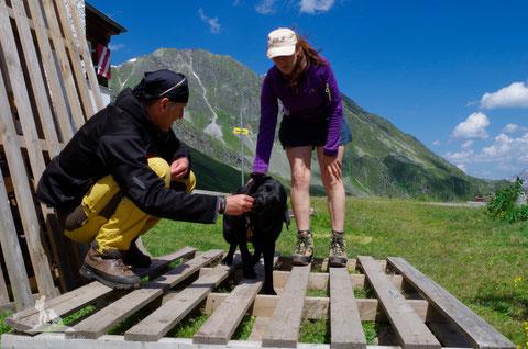 Bergwandern mit Hund Übungen