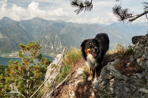 Wandern mit Hund, monte Stino, Idrosee, mein-wanderhund.de