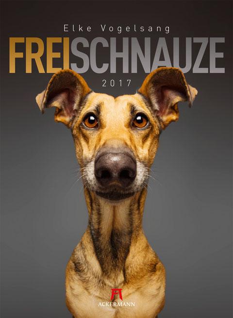 Ackermann Kalender Freischnauze