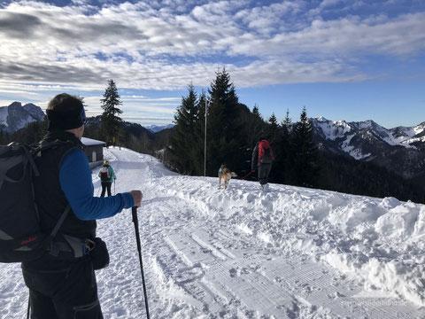 mein wanderhund; Winterwandern mit Hund; Unternberg; Ruhpolding; Chiemgau