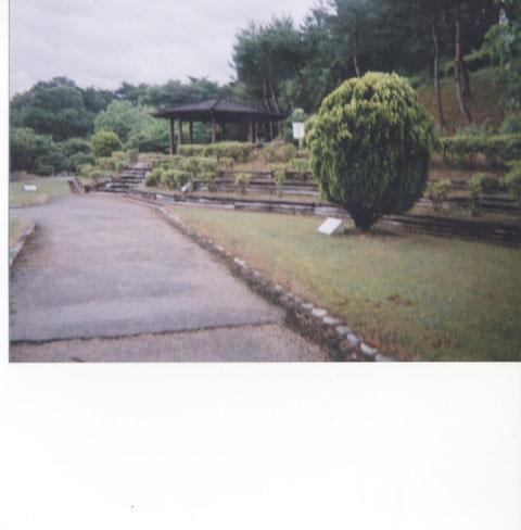 船岡山万葉の森植物園