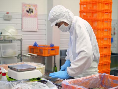 株式会社Local Specialty Products(ローカルスペシャリティプロダクツ、LSP)は、お客さまのご要望に応じた魚の切り身加工や角切り加工、粉付け・下味付けなどの各種加工販売を行っています。