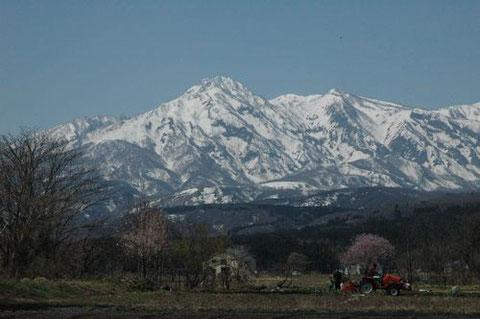 中郷区岡沢から見た跳ね馬