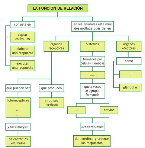 Funciones de relacion