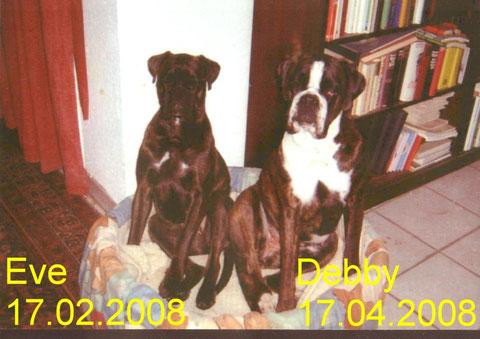Eve und Debby von Babs, waren Geschwister und mussten durch eine erblich bedingte Nierenerkrankung, PNP, im Alter von nur knapp 4 Jahren, innerhalb von 8 Wochen, beide gehen.