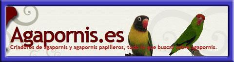 Agapornis.es