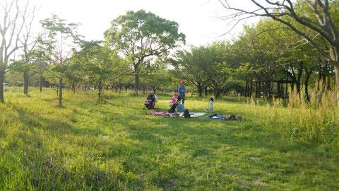 多布施河畔公園で読む 『古今和歌集』 佐賀 ほっこり本の会 ホームページ