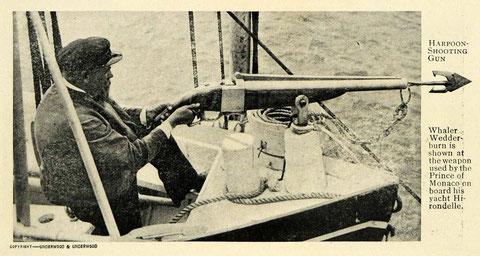 Greener Whaling Gun