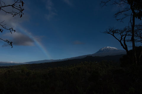 Schnee auf dem Kilimanjaro