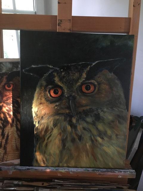 Uhu. Öl auf Leinwand. 40 x 50 cm.