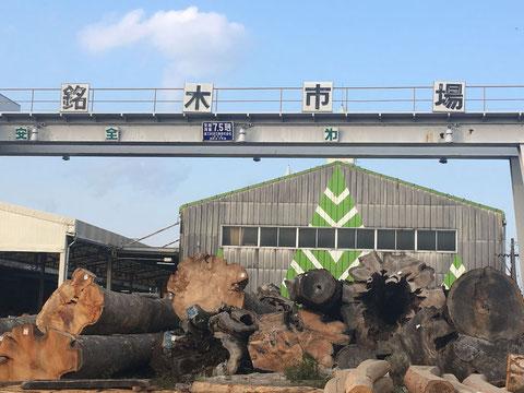 岐阜 県産 木材 銘木材 市場 日本最大 日本一 家具材 飛騨 色々 各種 自然 天然木 逸品 手に入りにくい