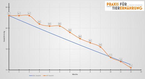 Spikey's Reduktionskurve