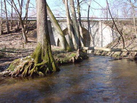 Schwallstrecke Straßenbrücke Str. 22