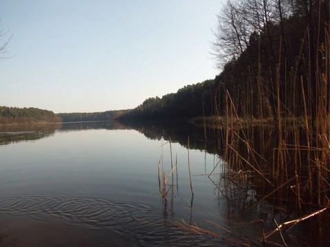 Krapsko - Radlino - See