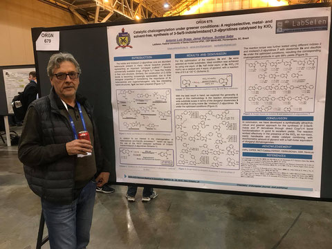 Presentation by Prof. Braga at 255th ACS National Meeting at New Orleans - USA 21-03-2018