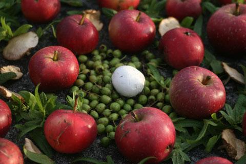 Red Apple Mandala, alle Rechte erdengoldKUNSTwerk, Foto: Nathalie Arun