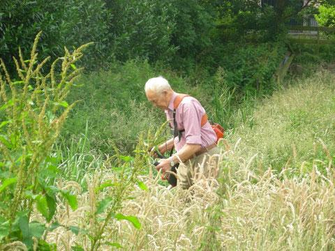 meehelpen het gras te maaien