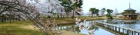 福島県矢吹町 大池公園