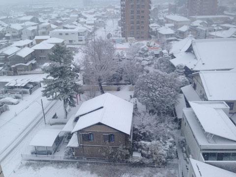 屋根の上にも雪が積もっています