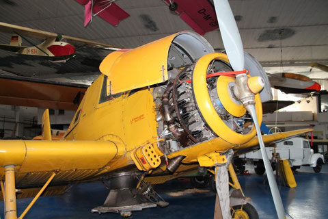 Z37 D-ESRF-2