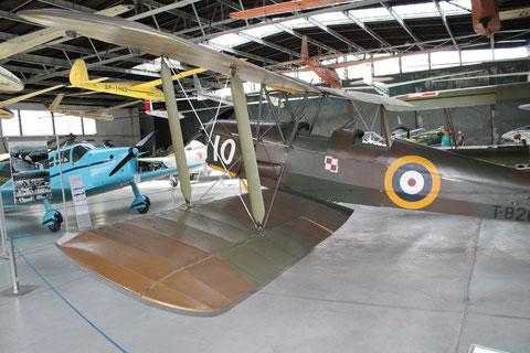 Tiger Moth T-8209-3