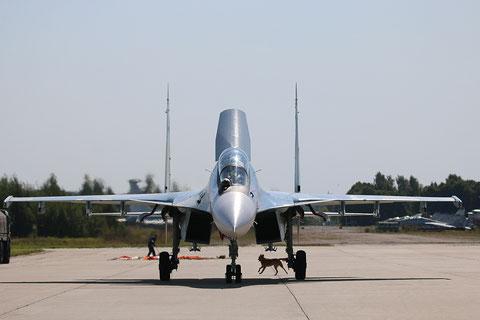 """SU 30SM """" 53 """"  RF-81872  Воздушно-космические силы  ( ВКС ) Россия -6"""