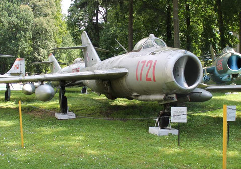 Lim5 1721-3