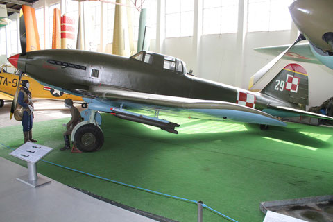 "IL 10 "" 29 "" Polish Air Force -1"