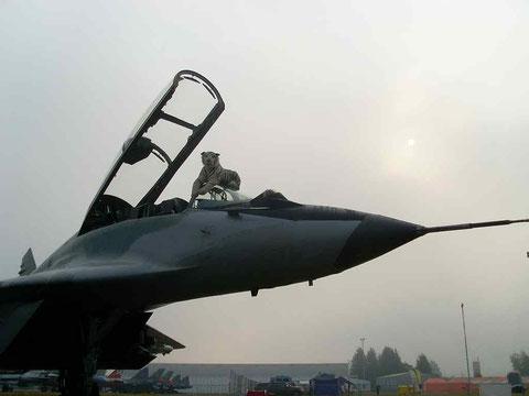 MiG29 5304-6