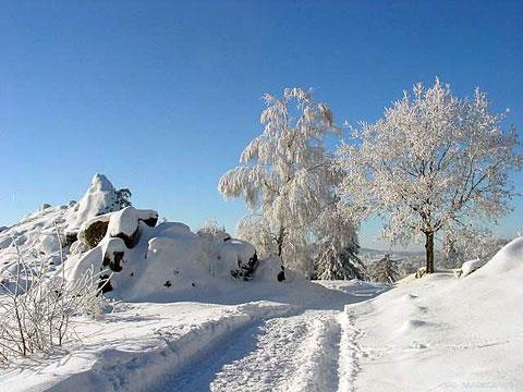 Winter im Oberpfälzer Wald