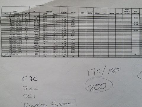 シカ角のスコア表