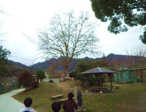 【写真1】校内の「いこいの広場」