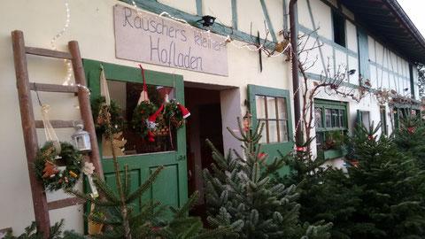 ...hier ist auch DER BAUM für Ihr Weihnachtsfest dabei