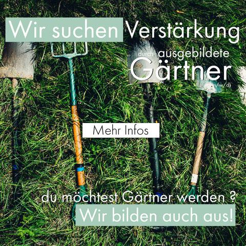 jobsuche schwalmstadt treysa - gartenau - gärtner - landschaftsgärtner - azubi - ausbildung