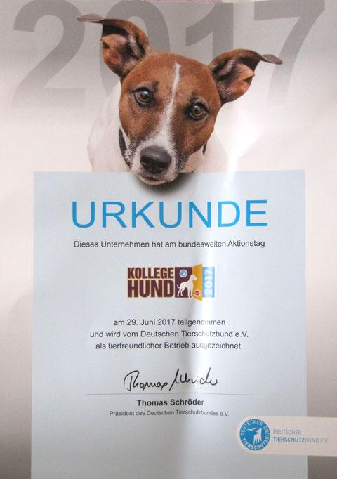 Urkunde Kollege Hund Tierschutzbund 2017