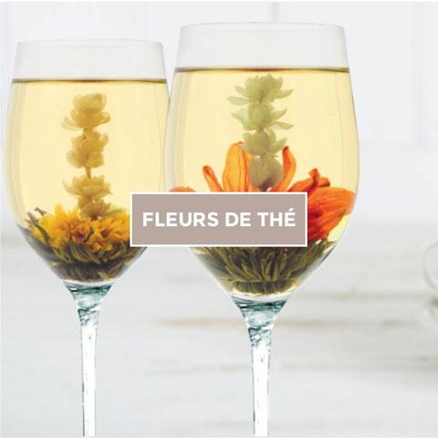image-fleur-de-thé