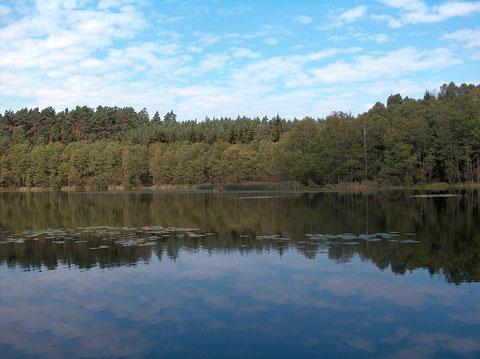 Verbandsgewässer Krummer See bei Drewin