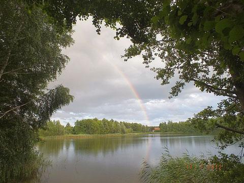 Das Verbandsgewässer Pfarrsee bei Wokuhl, beliebt bei Friedfisch- und Raubfischanglern