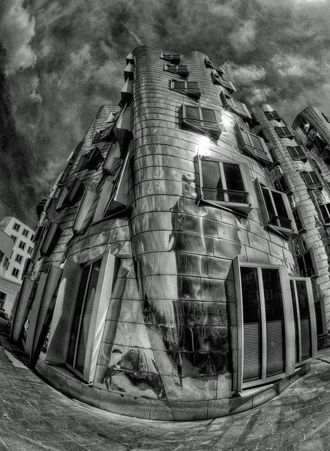 Gehry fisheye